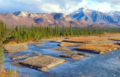 Alaska Denali National Park - Teklanika