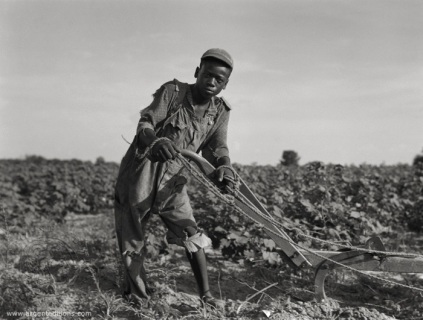 Dorothea Lange, Sharecropper boy with plow