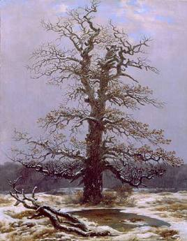 Caspar Dawvid Friedrich: Dąb w śniegu