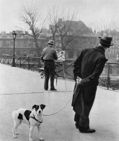 Robert Doisneau: Foxterrier
