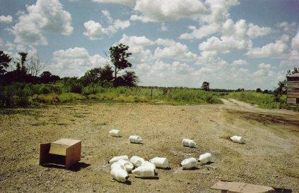 William Eggleston: Plastic bottles
