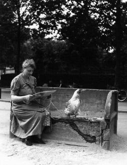 Robert Doisneau: La poule en laisse